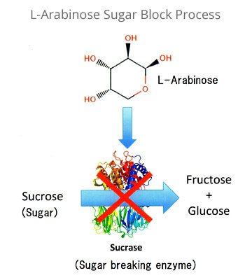 L-Arabinose Sugar Block Process